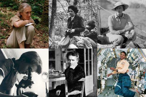 In senso orario, da sinistra a destra: Jane Goodall, Rachel Carson, Mary Leakey, Mae Jemison, Marie Curie, Rosalind Franklin